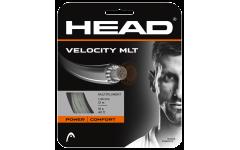Velocity MLT