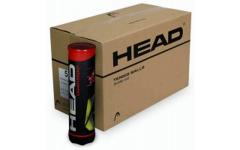 4B HEAD Championship-6DZ