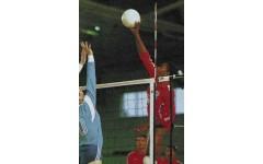 Волейбольная антенна